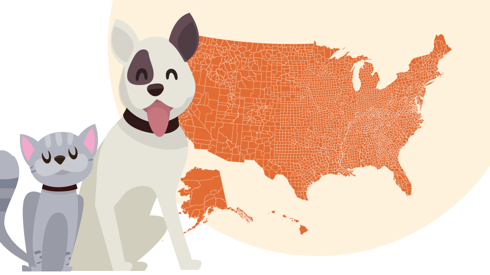 Looking for pet ownership statistics by state? We compiled interesting pet stats from more than 19 different studies so you don't have to.